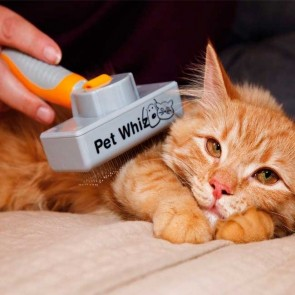 Pet Whiz Cat
